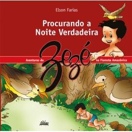 PROCURANDO A NOITE VERDADEIRA
